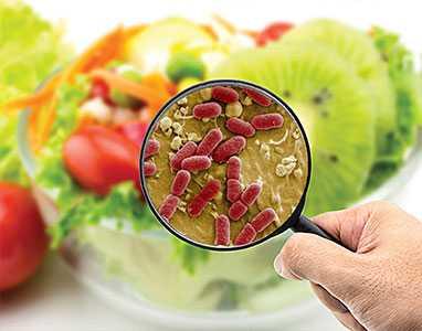Антибактериални свойства