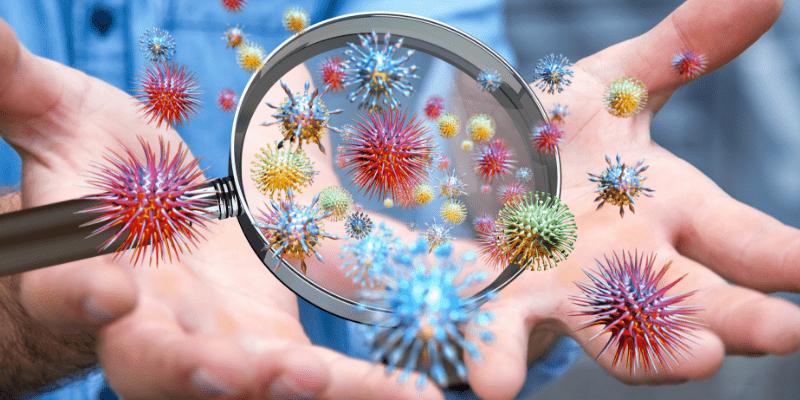 Вируси и бактерии