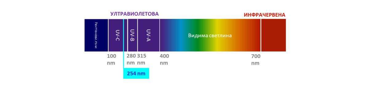 UV светлина